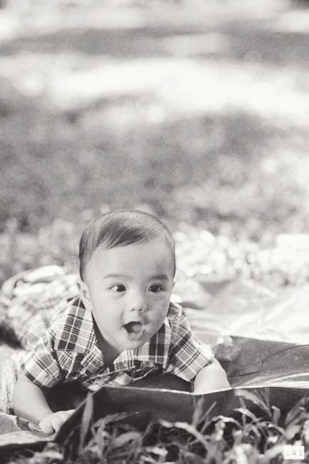 22 Lucas