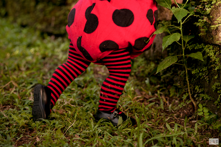 Lady Bug Kids Outfit Max Birthday Party Photographed by Lai de Guzman