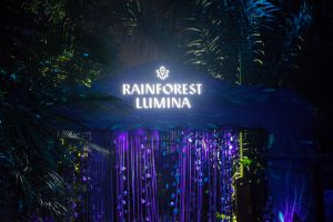 Rain Forest Lumina Singapore Lai de Guzman Photography